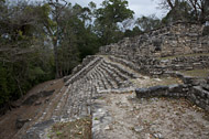 Temple Edifice XLIV at Yaxchilan Ruins - yaxchilan mayan ruins,yaxchilan mayan temple,mayan temple pictures,mayan ruins photos